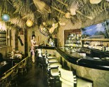 1960's tiki bar